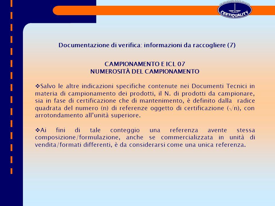 Documentazione di verifica: informazioni da raccogliere (7)