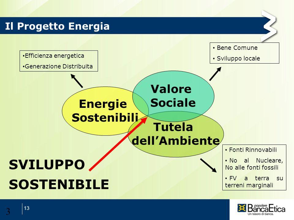 SVILUPPO SOSTENIBILE Valore Sociale Energie Sostenibili Tutela