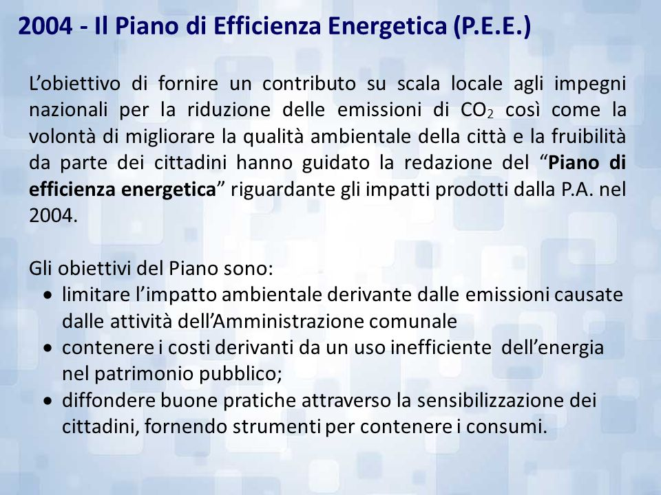 2004 - Il Piano di Efficienza Energetica (P.E.E.)