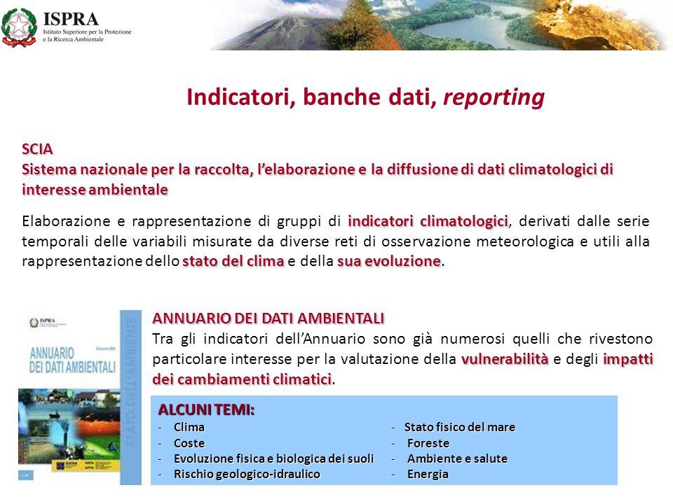 Indicatori, banche dati, reporting