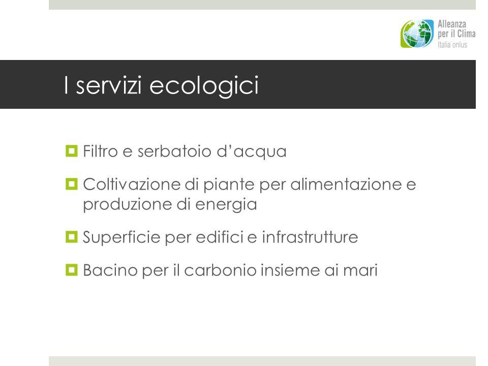 I servizi ecologici Filtro e serbatoio d'acqua