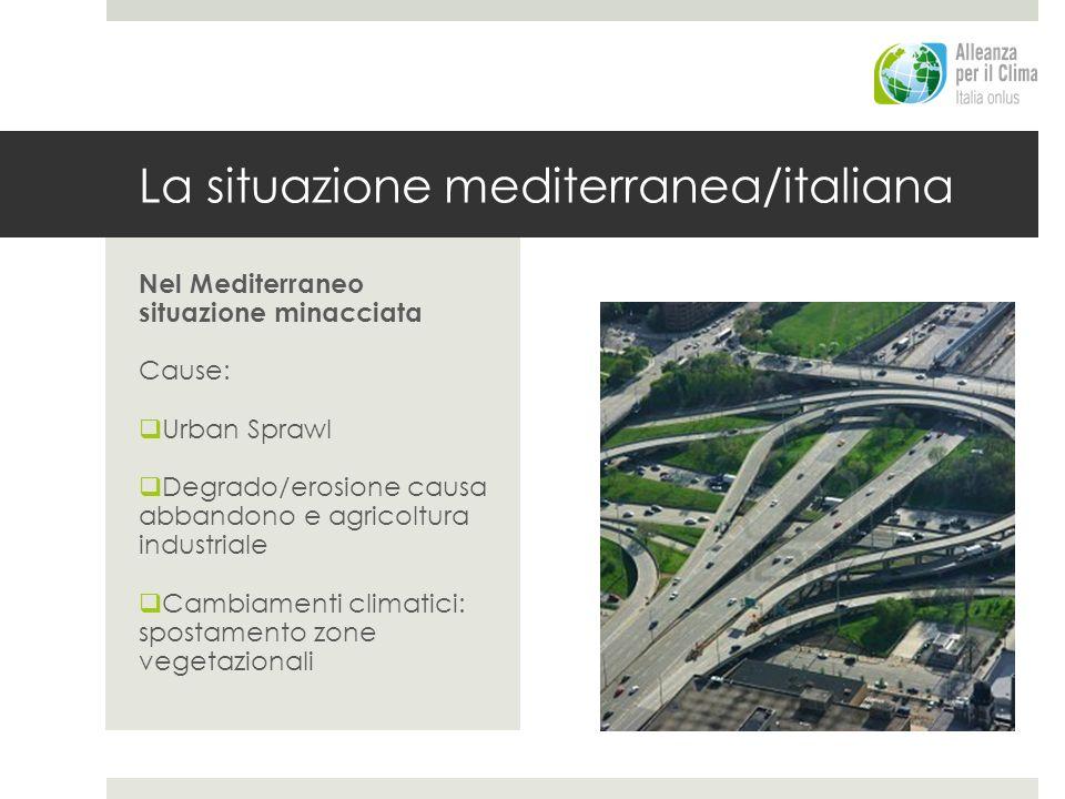 La situazione mediterranea/italiana
