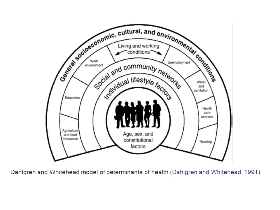 Dahlgren and Whitehead model of determinants of health (Dahlgren and Whitehead, 1991).