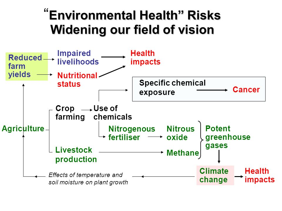 Environmental Health Risks Widening our field of vision
