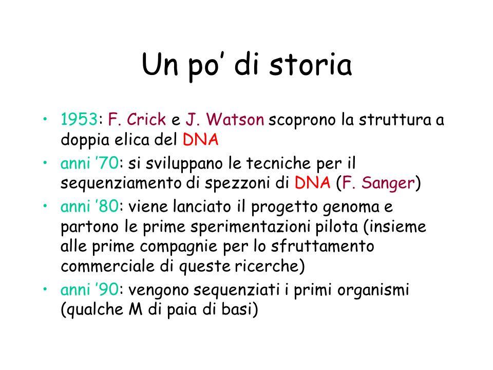 Un po' di storia 1953: F. Crick e J. Watson scoprono la struttura a doppia elica del DNA.