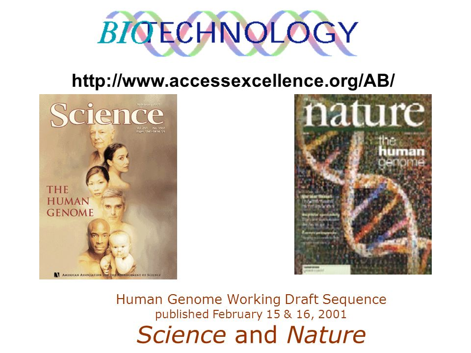 http://www.accessexcellence.org/AB/ Human Genome Working Draft Sequence published February 15 & 16, 2001 Science and Nature.