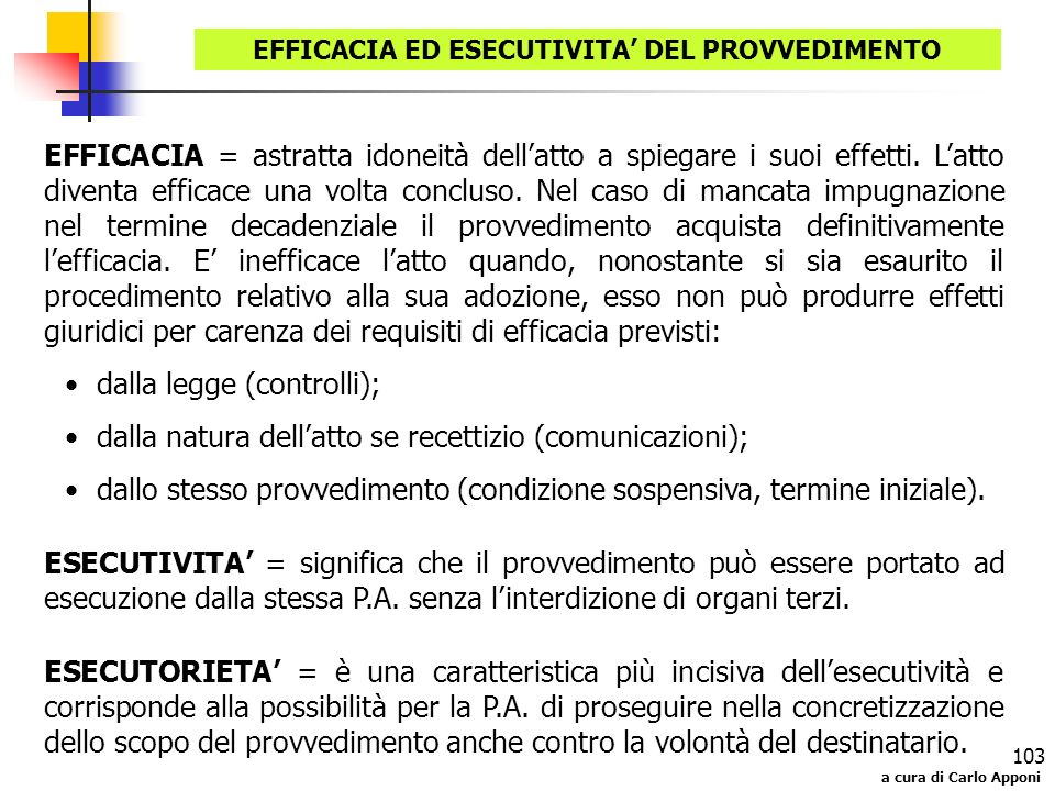 EFFICACIA ED ESECUTIVITA' DEL PROVVEDIMENTO