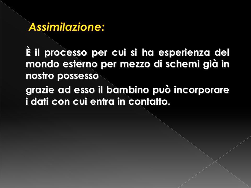 Assimilazione: