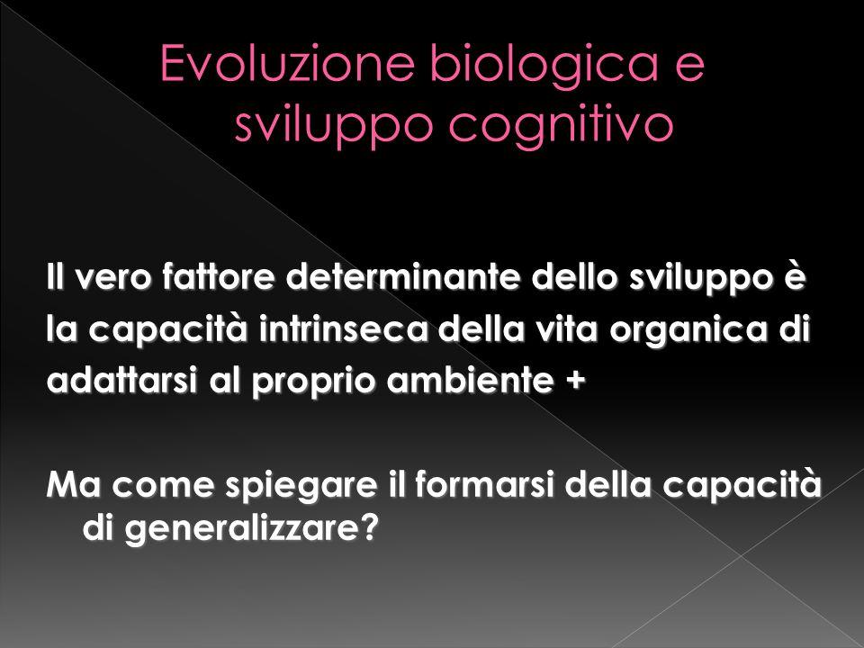 Evoluzione biologica e sviluppo cognitivo
