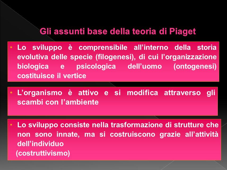 Gli assunti base della teoria di Piaget