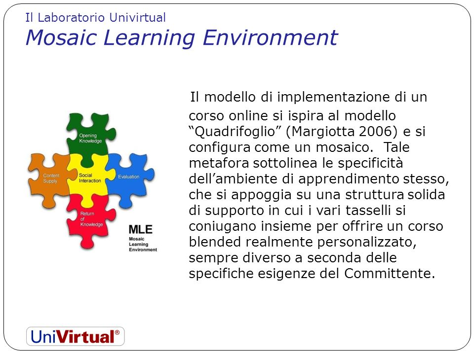 Mosaic Learning Environment