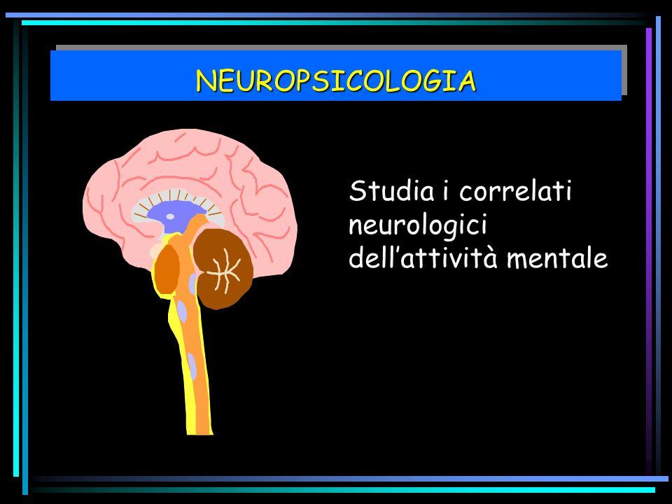NEUROPSICOLOGIA Studia i correlati neurologici dell'attività mentale