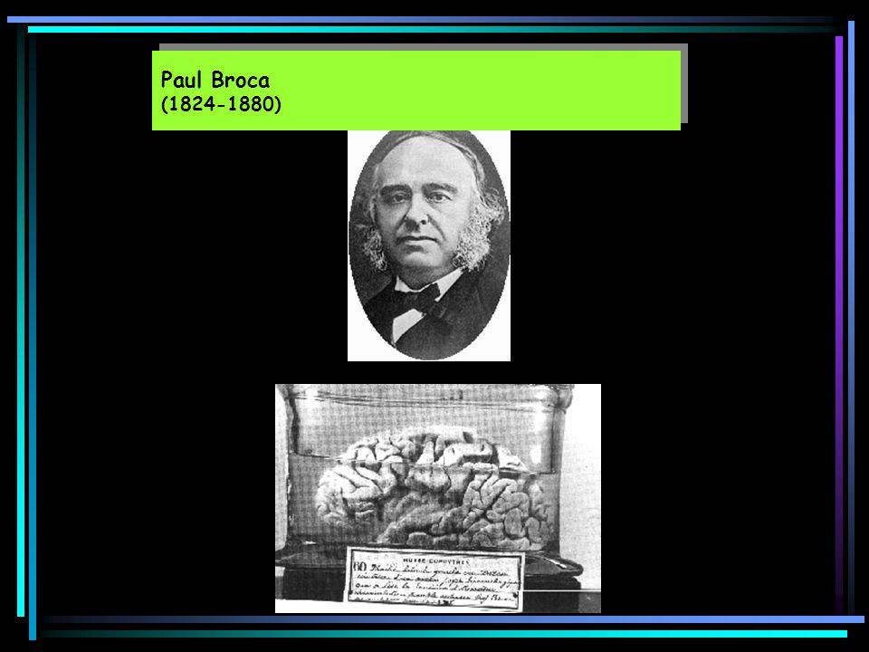 Paul Broca (1824-1880)