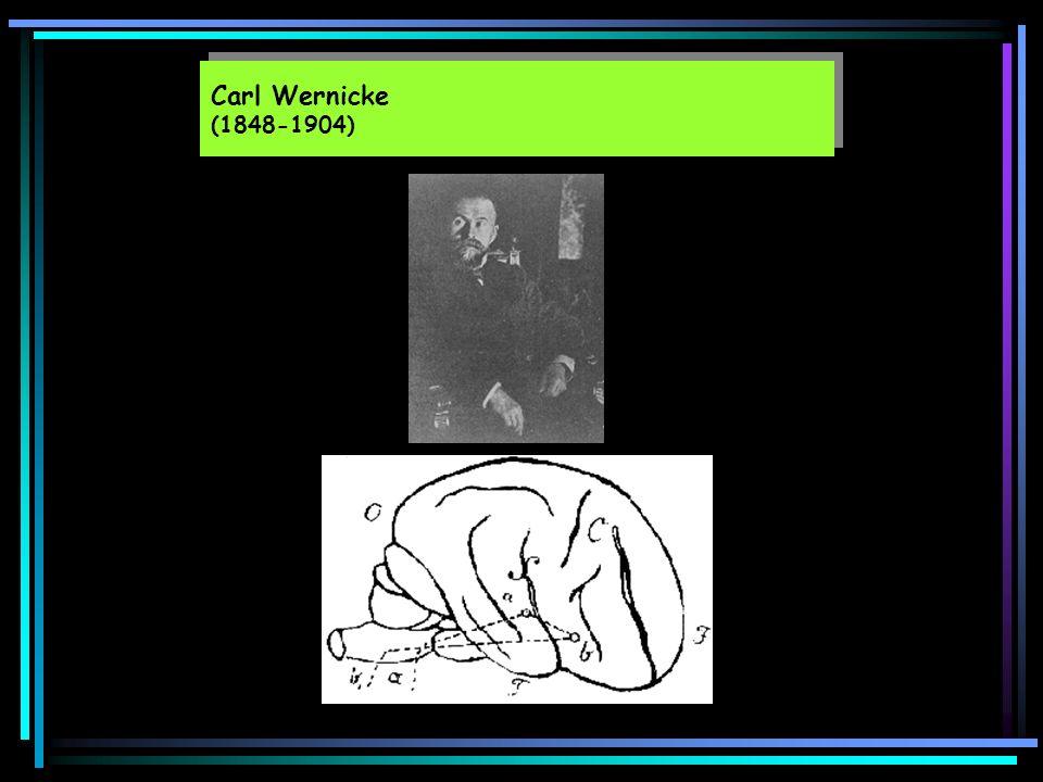 Carl Wernicke (1848-1904)