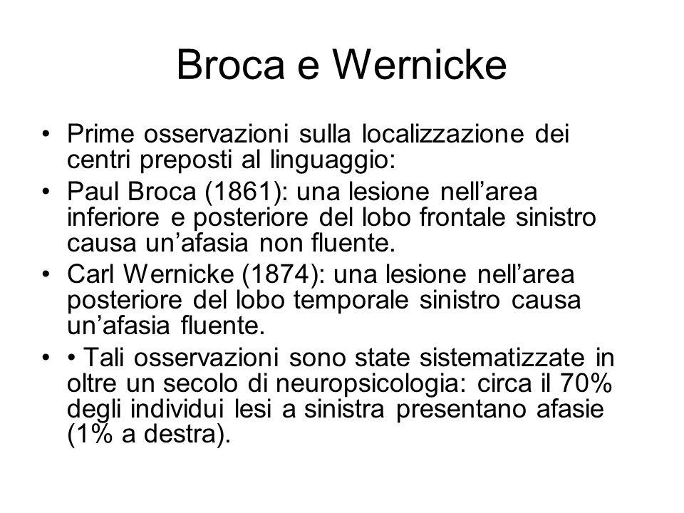 Broca e Wernicke Prime osservazioni sulla localizzazione dei centri preposti al linguaggio: