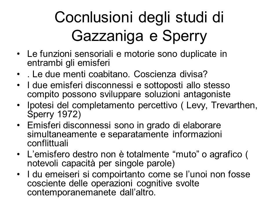 Cocnlusioni degli studi di Gazzaniga e Sperry