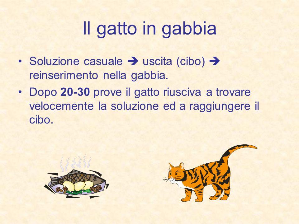 Il gatto in gabbia Soluzione casuale  uscita (cibo)  reinserimento nella gabbia.