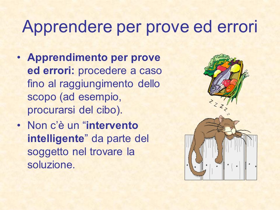 Apprendere per prove ed errori