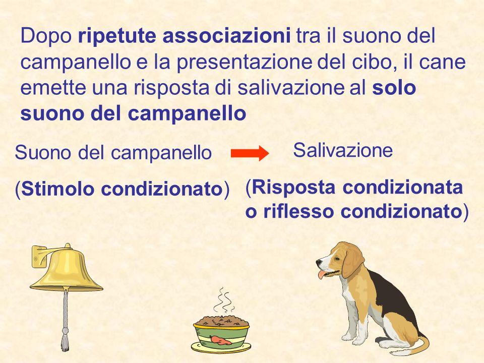 Dopo ripetute associazioni tra il suono del campanello e la presentazione del cibo, il cane emette una risposta di salivazione al solo suono del campanello