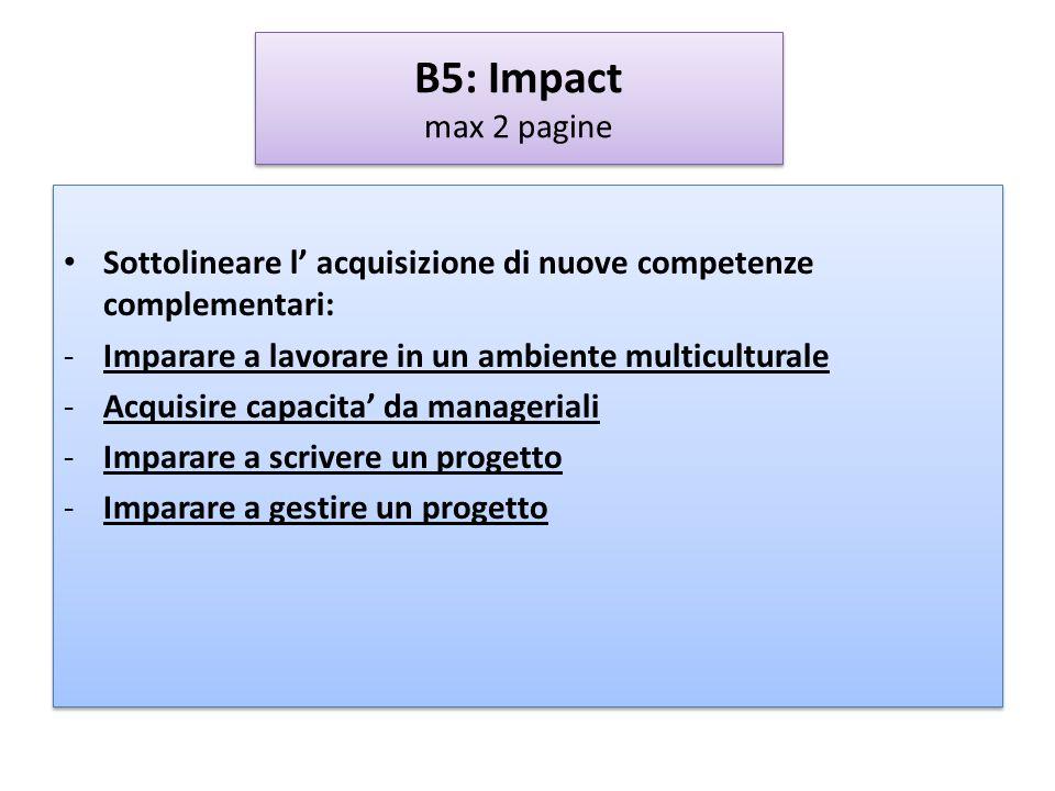 B5: Impact max 2 pagine Sottolineare l' acquisizione di nuove competenze complementari: Imparare a lavorare in un ambiente multiculturale.