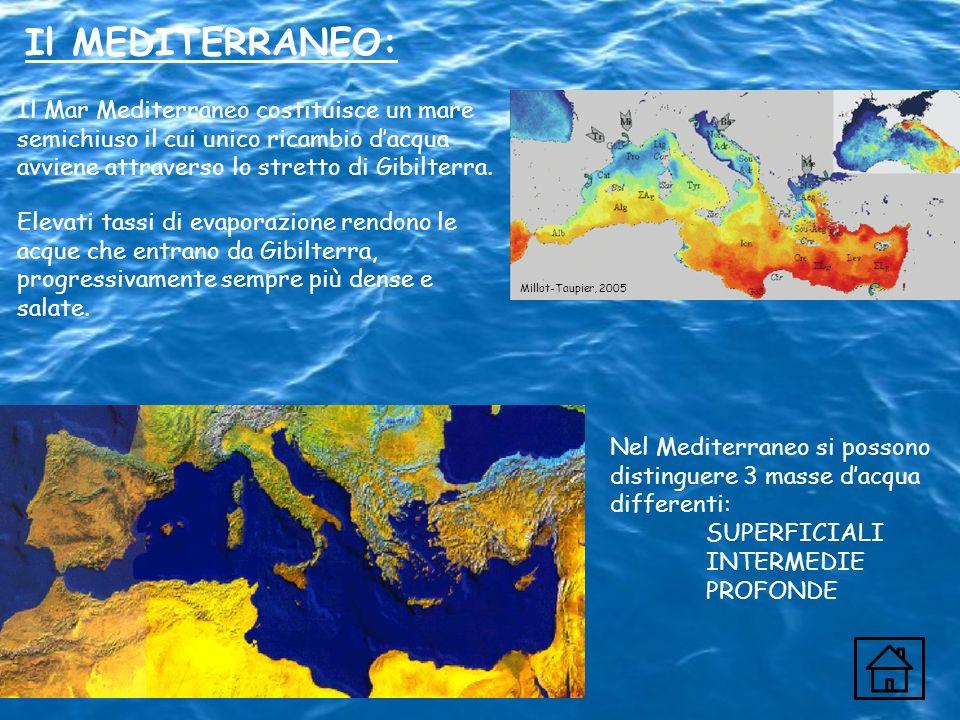 Il MEDITERRANEO:Il Mar Mediterraneo costituisce un mare semichiuso il cui unico ricambio d'acqua avviene attraverso lo stretto di Gibilterra.