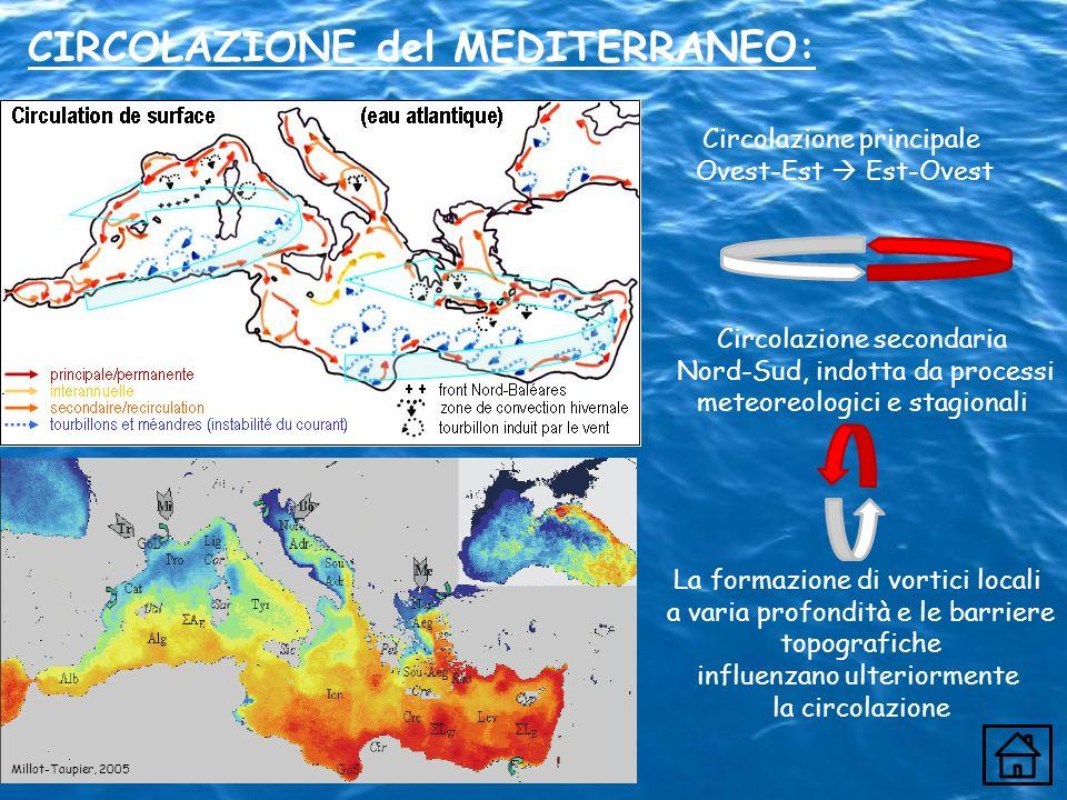 CIRCOLAZIONE del MEDITERRANEO: