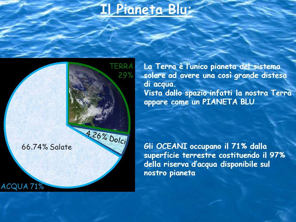 Il Pianeta Blu:TERRA. 29% La Terra è l'unico pianeta del sistema solare ad avere una così grande distesa di acqua.