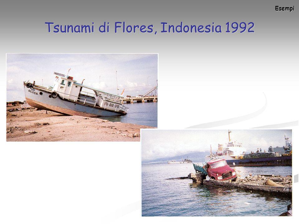 Tsunami di Flores, Indonesia 1992