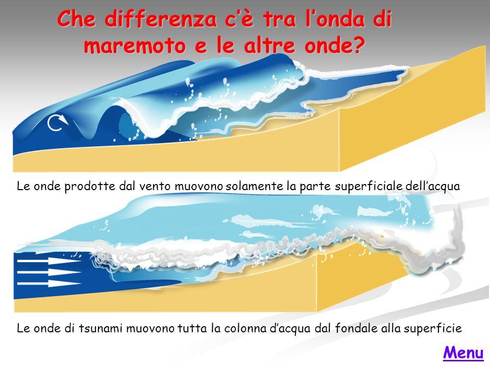 Che differenza c'è tra l'onda di maremoto e le altre onde