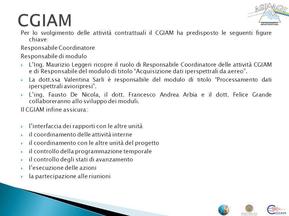 CGIAM Per lo svolgimento delle attività contrattuali il CGIAM ha predisposto le seguenti figure chiave:
