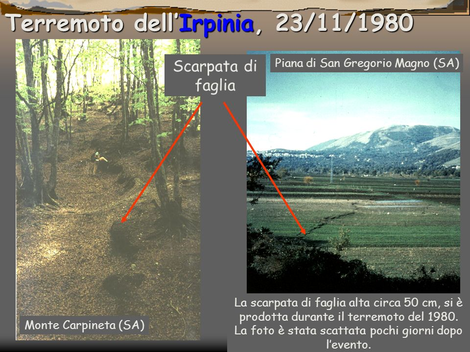 Terremoto dell'Irpinia, 23/11/1980