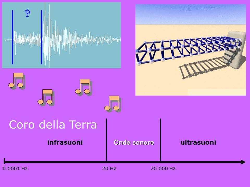 Coro della Terra P ultrasuoni infrasuoni Onde sonore 20 Hz 20.000 Hz