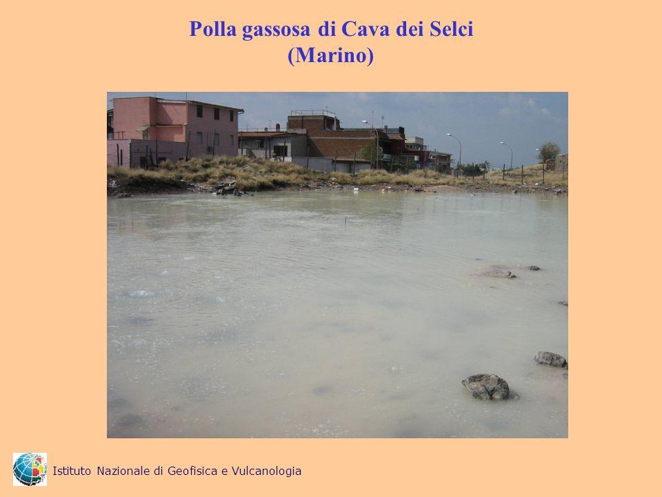 Polla gassosa di Cava dei Selci (Marino)