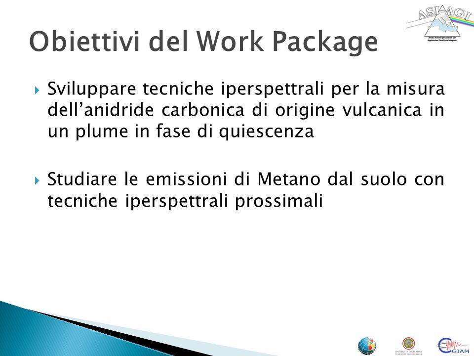 Obiettivi del Work Package