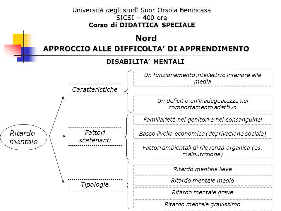 Nord APPROCCIO ALLE DIFFICOLTA' DI APPRENDIMENTO Ritardo mentale