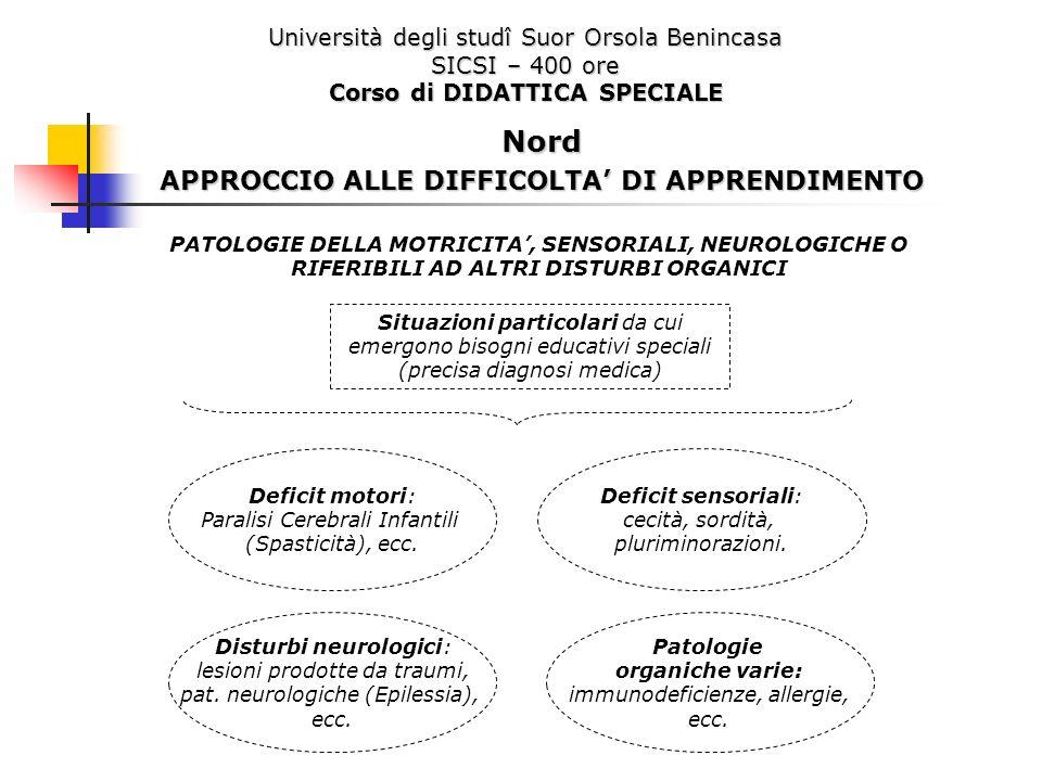 Nord APPROCCIO ALLE DIFFICOLTA' DI APPRENDIMENTO