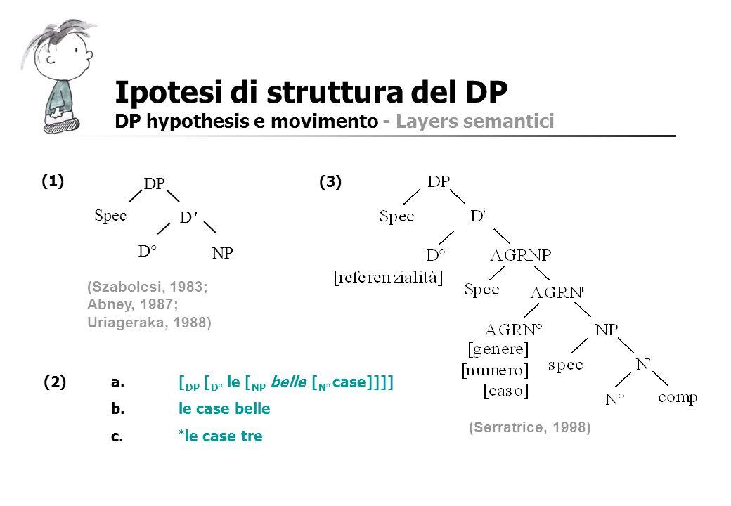 Ipotesi di struttura del DP
