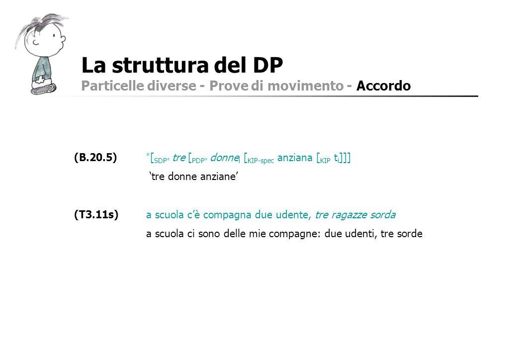 La struttura del DP Particelle diverse - Prove di movimento - Accordo