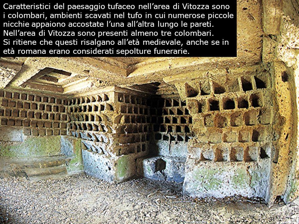 Caratteristici del paesaggio tufaceo nell'area di Vitozza sono i colombari, ambienti scavati nel tufo in cui numerose piccole nicchie appaiono accostate l'una all'altra lungo le pareti.