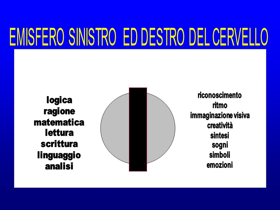 EMISFERO SINISTRO ED DESTRO DEL CERVELLO