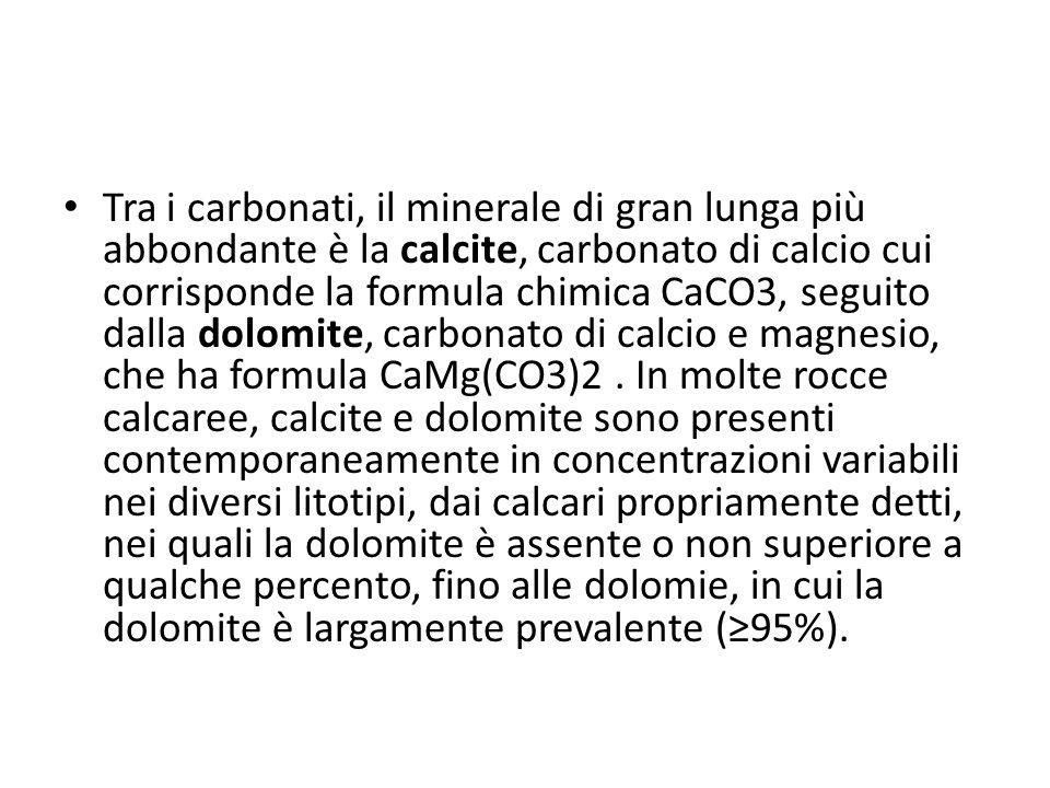 Tra i carbonati, il minerale di gran lunga più abbondante è la calcite, carbonato di calcio cui corrisponde la formula chimica CaCO3, seguito dalla dolomite, carbonato di calcio e magnesio, che ha formula CaMg(CO3)2 .