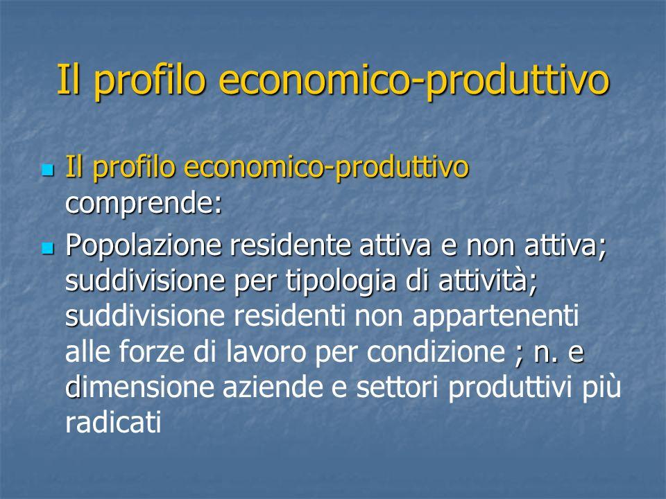 Il profilo economico-produttivo