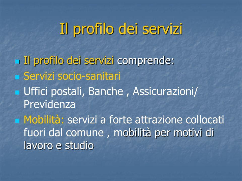 Il profilo dei servizi Il profilo dei servizi comprende: