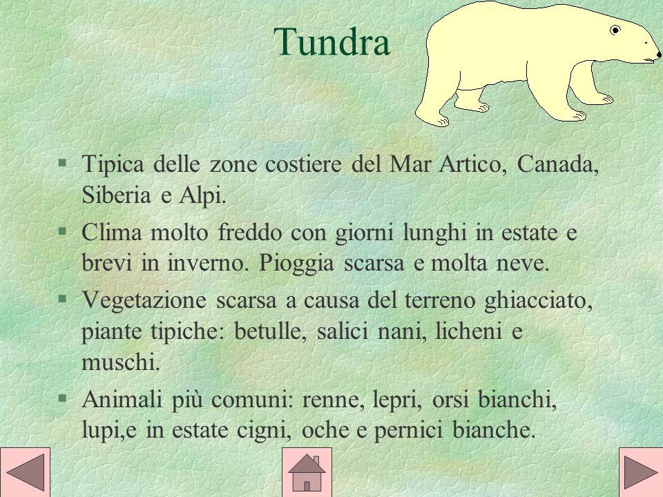 Tundra Tipica delle zone costiere del Mar Artico, Canada, Siberia e Alpi.