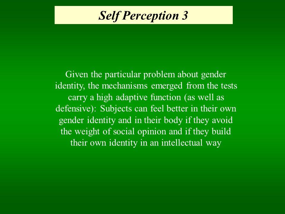 Self Perception 3