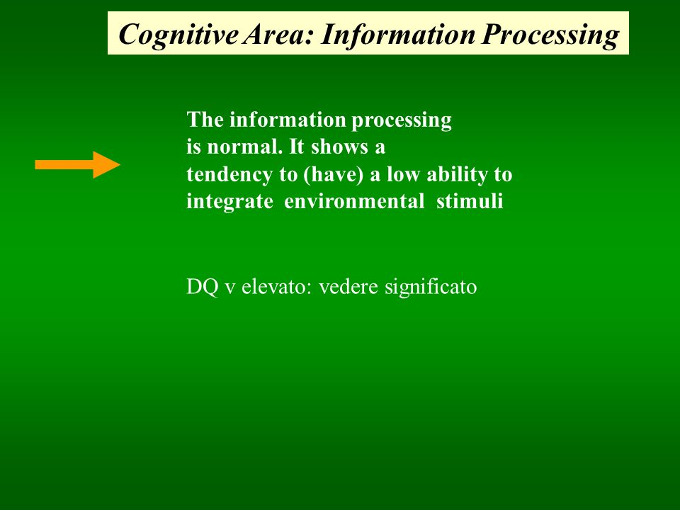 Cognitive Area: Information Processing