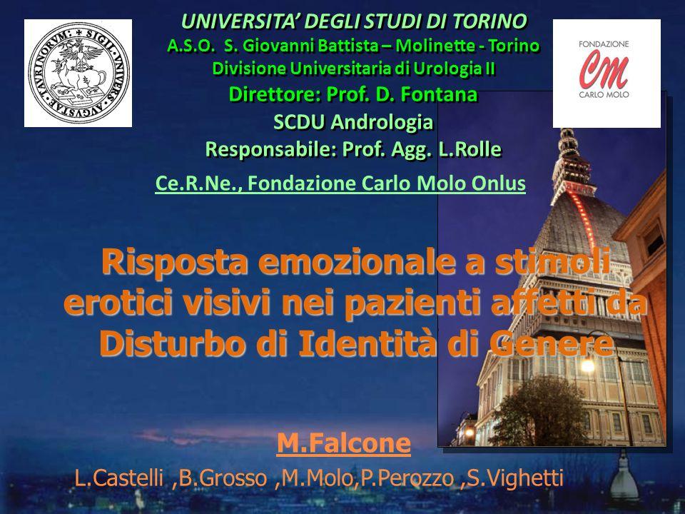 M.Falcone L.Castelli ,B.Grosso ,M.Molo,P.Perozzo ,S.Vighetti ,.