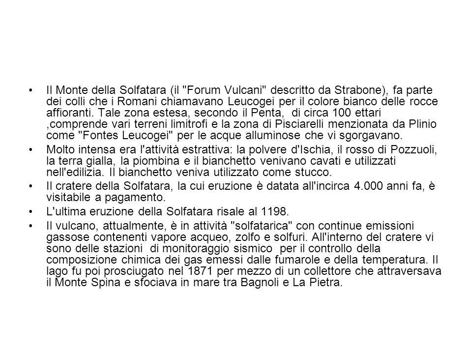 Il Monte della Solfatara (il Forum Vulcani descritto da Strabone), fa parte dei colli che i Romani chiamavano Leucogei per il colore bianco delle rocce affioranti. Tale zona estesa, secondo il Penta, di circa 100 ettari ,comprende vari terreni limitrofi e la zona di Pisciarelli menzionata da Plinio come Fontes Leucogei per le acque alluminose che vi sgorgavano.