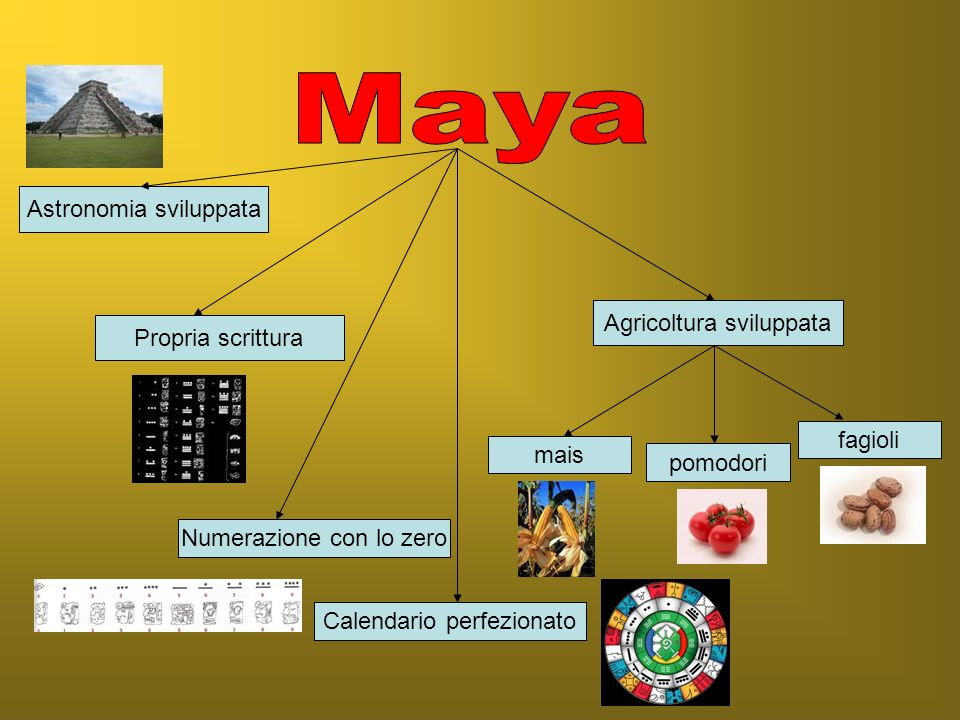 Maya Astronomia sviluppata Agricoltura sviluppata Propria scrittura