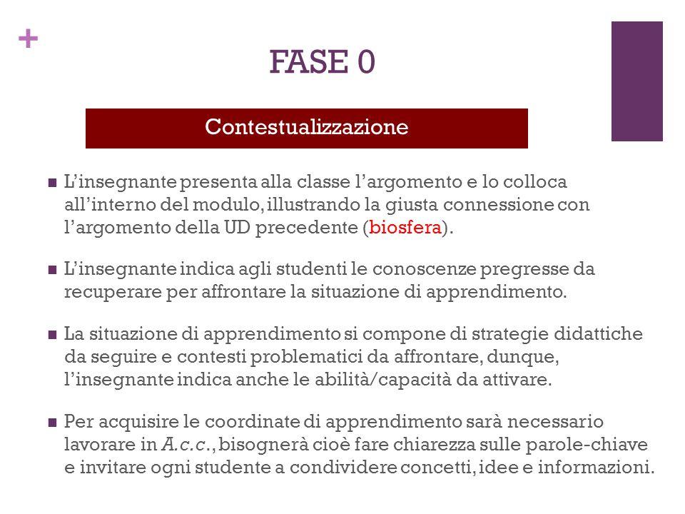 FASE 0 Contestualizzazione